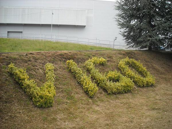 hockei001.jpg